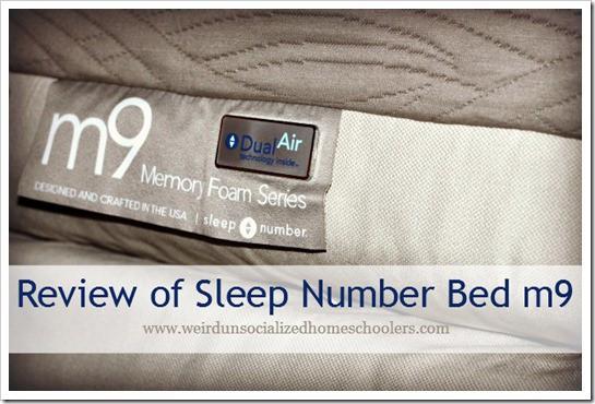 review of sleep number bed - Sleepnumber Bed