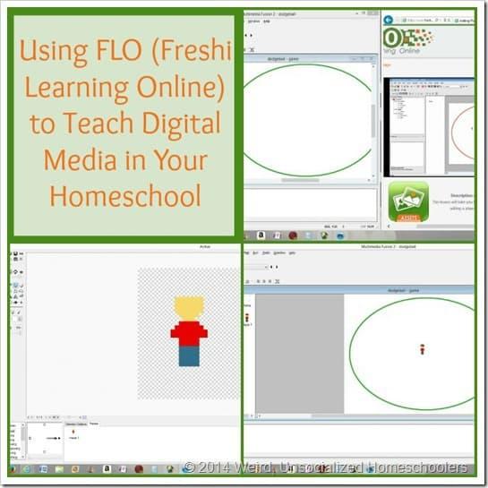 FLO Review