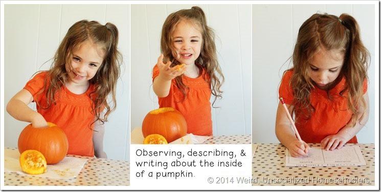 pumpkin parts2