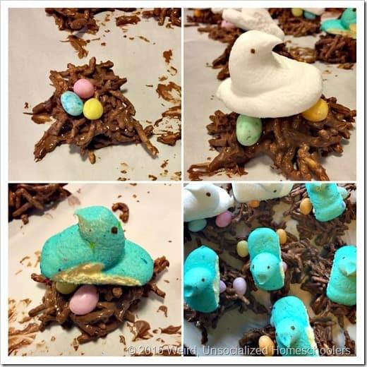 Birds Nest Image 5