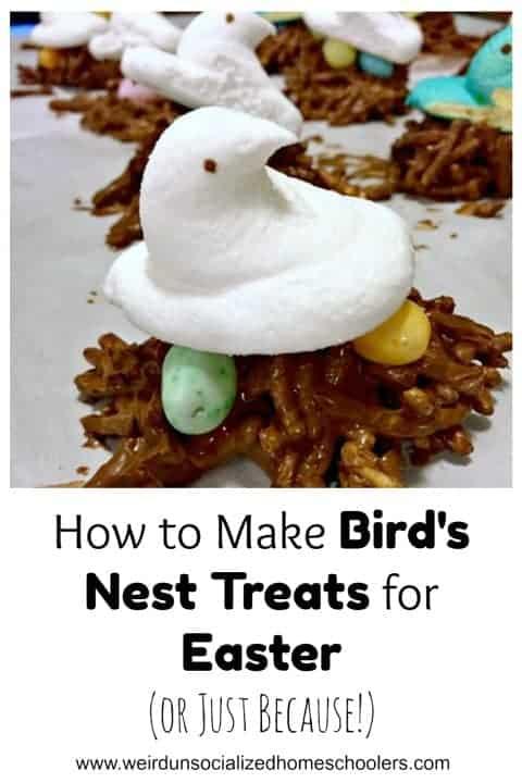 how to make bird nest treats