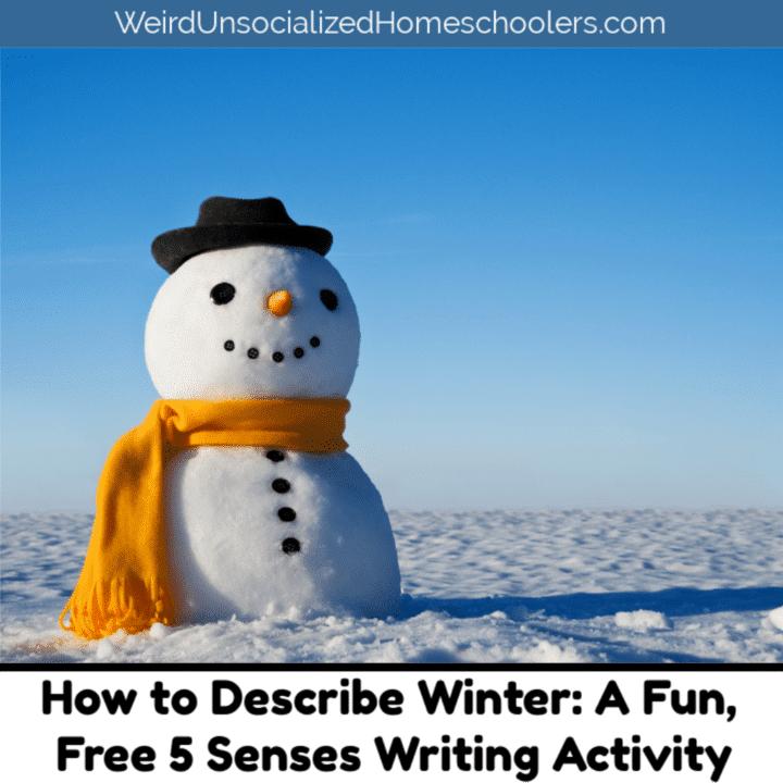 Describing Winter A Free Winter Winter Writing Activity