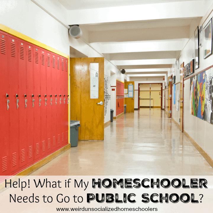 home school v public school